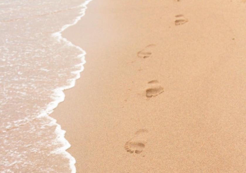 Sustenta mis pasos en tus caminos,..